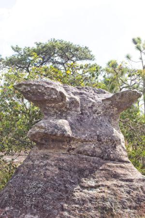 Rock formatioin