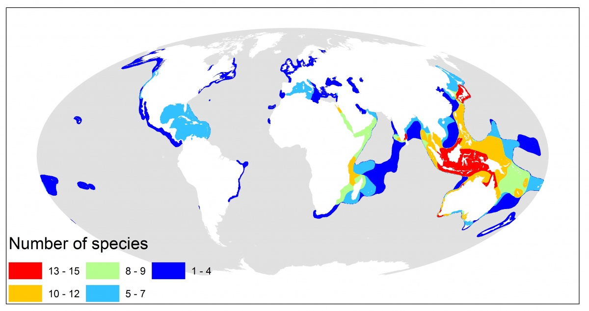Post 007-On Zostera marina and seagrass-Fig 06-Map of seagrass species richness distribution-WCMC-015-SeagrassRichness2003